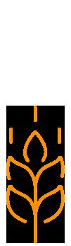 Агробізнес України 2015 — лого 1